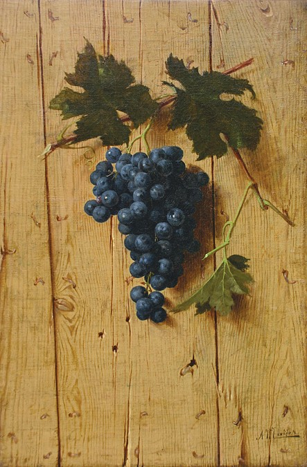 A. Mayer ,   Grapevine with Fruit  ,  circa 1875     oil on canvas ,  16